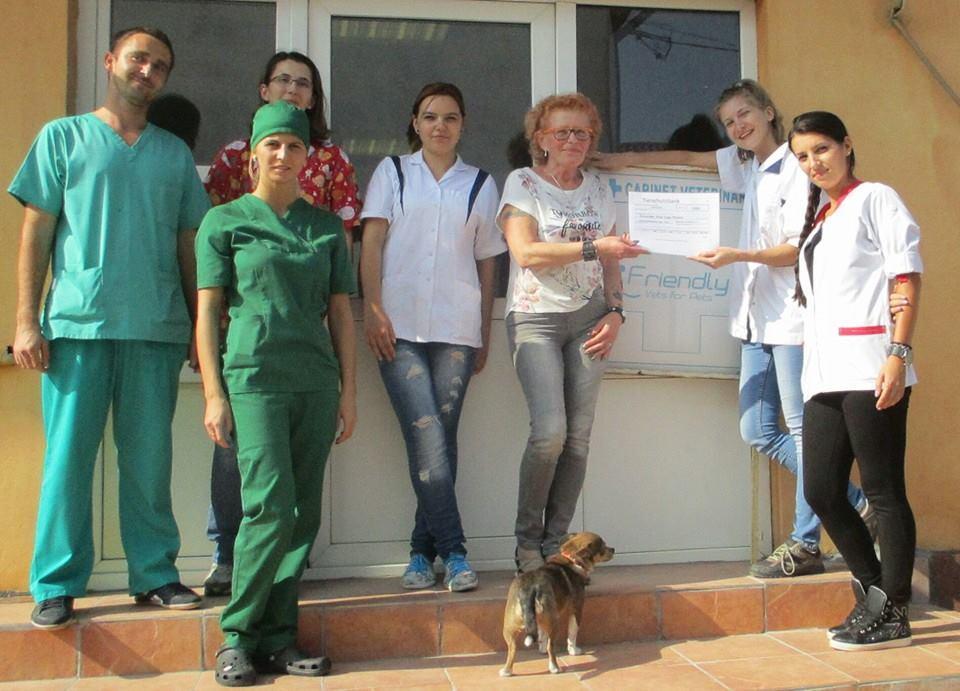 Team von Vets for Pets